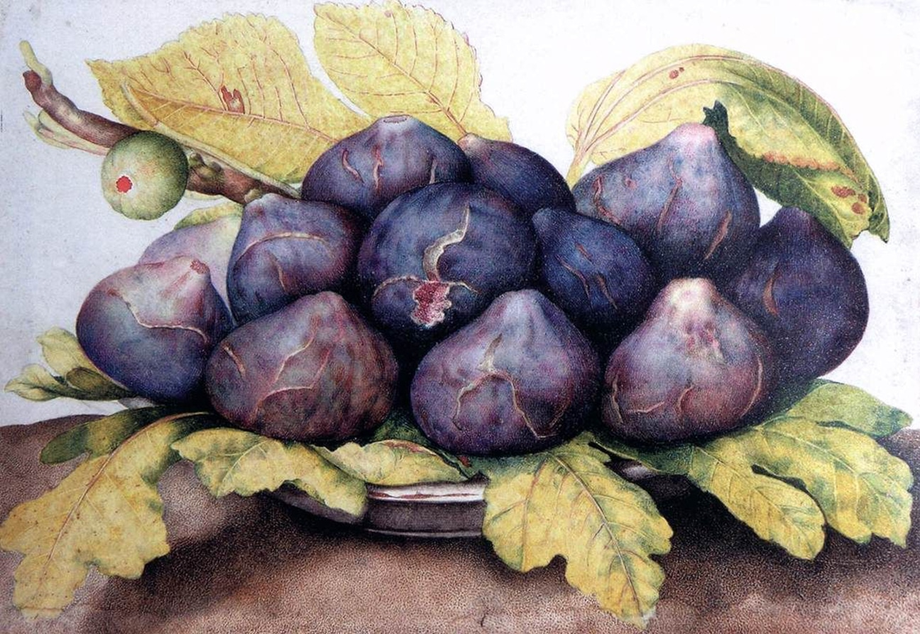 Tips to Create Your Own Watercolor Masterpiece