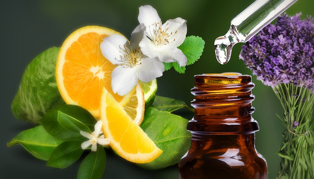 Boost Creativity with Essential Oils - Professional Artist